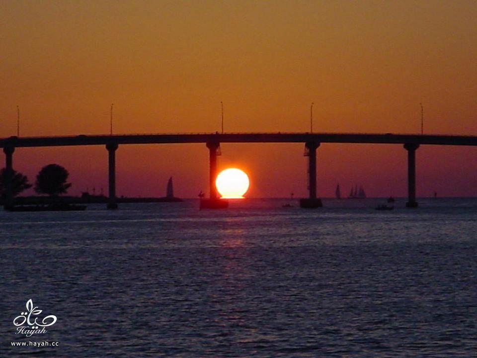 صور سواحل فلوريدا hayahcc_1442168086_668.jpg