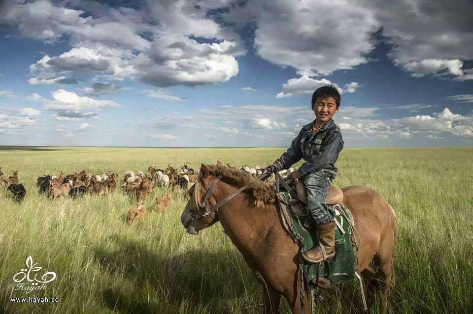 أول مرة حتشوف أطفال منغوليا مع حيواناتهم hayahcc_1442632981_465.jpg