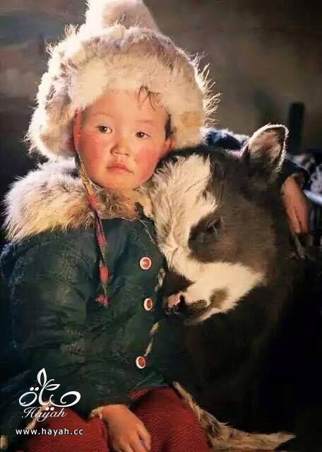 أول مرة حتشوف أطفال منغوليا مع حيواناتهم hayahcc_1442632983_111.jpg