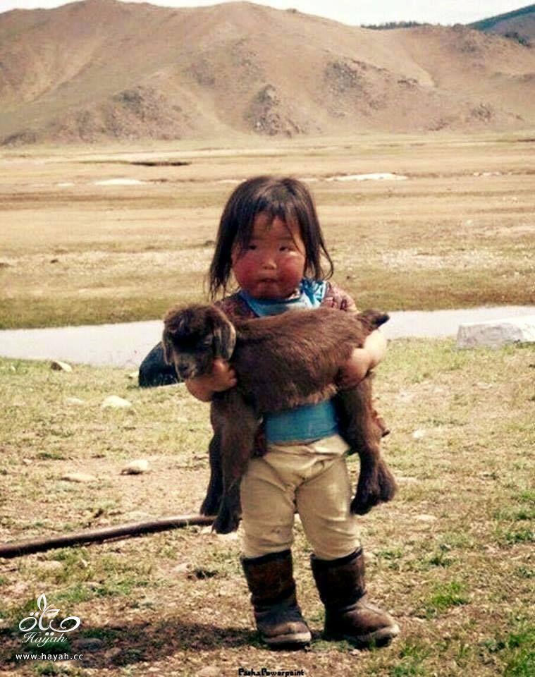 أول مرة حتشوف أطفال منغوليا مع حيواناتهم hayahcc_1442632983_429.jpg