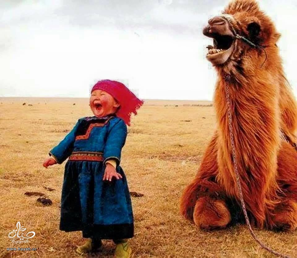 أول مرة حتشوف أطفال منغوليا مع حيواناتهم hayahcc_1442632983_822.jpg