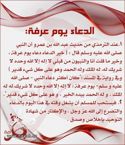 فضل صيام يوم عرفة hayahcc_1442667478_378.jpg