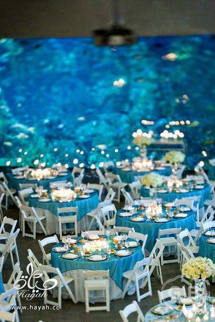 قاعة أفراح تحت البحر hayahcc_1442752482_233.jpg