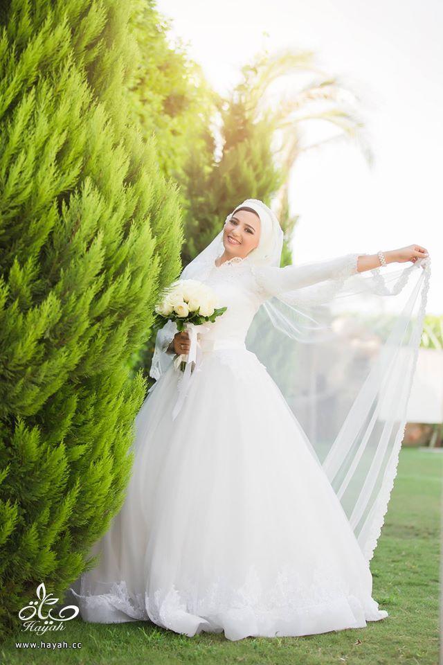 تشكيله من فساتين زفافك hayahcc_1442927988_409.jpg