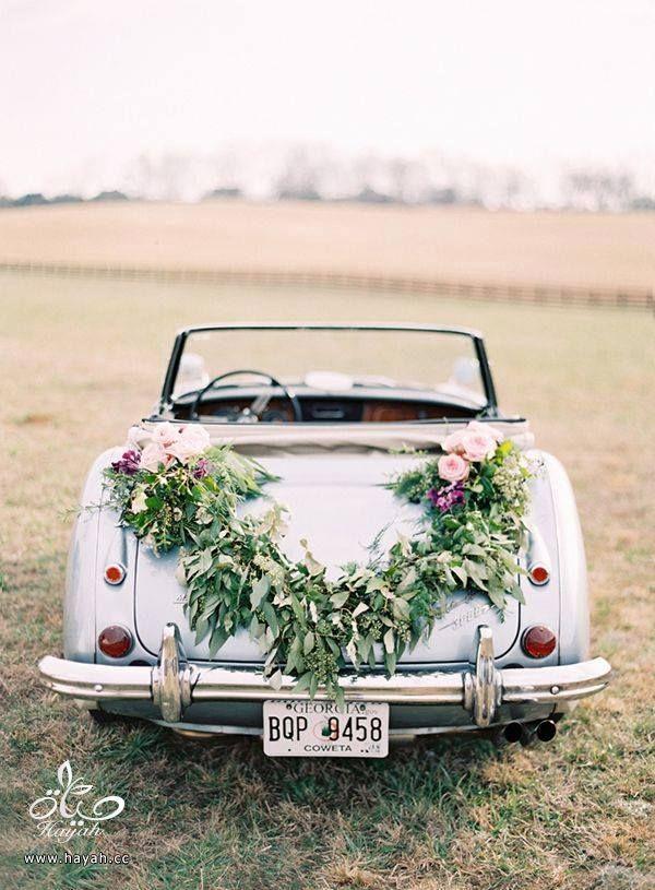 سيارة أحلامك بيوم زفافك hayahcc_1442941878_486.jpg