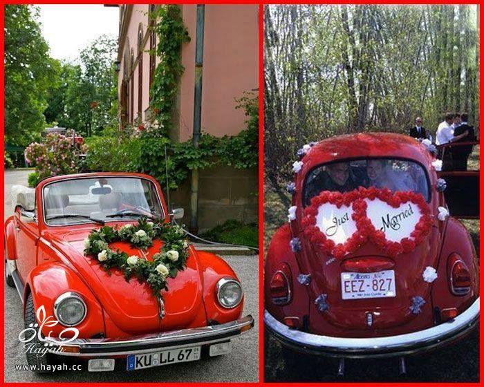 سيارة أحلامك بيوم زفافك hayahcc_1442941878_903.jpg
