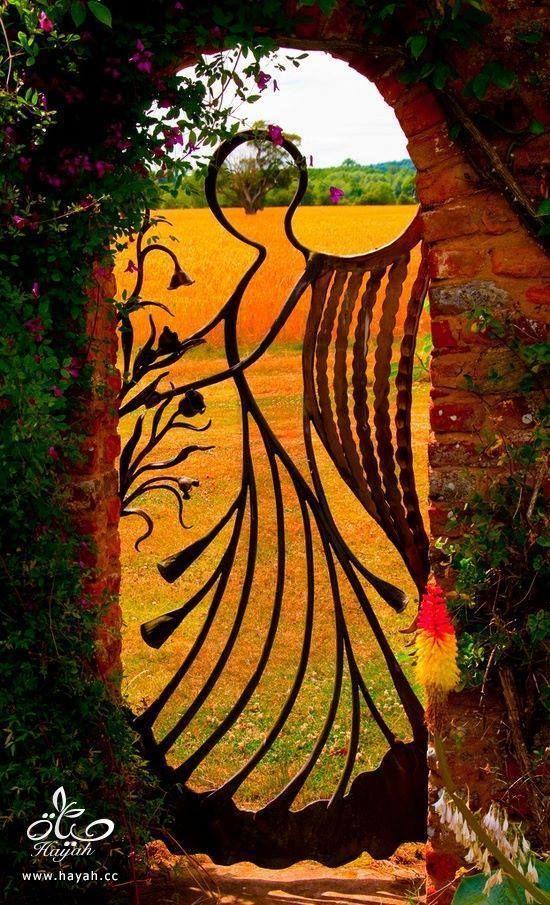 أفكارأبواب حدائق تجنن hayahcc_1443611083_479.jpg