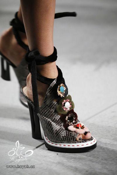 أحدث تشكيلة أحذية لهذا الموسم hayahcc_1443639474_567.jpg