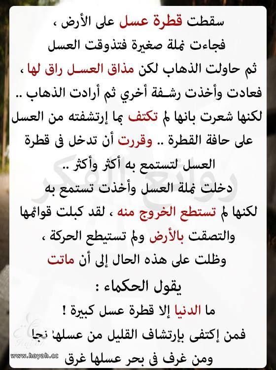 عبرة hayahcc_1443959404_559.jpg