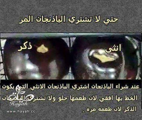 حتى لا تشتري الباذنجان المر hayahcc_1444011085_347.jpg
