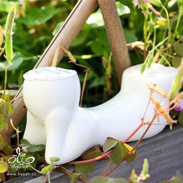 فازات جميلة لتضعي فيها نباتاتك الطبيعية hayahcc_1446048184_148.jpg