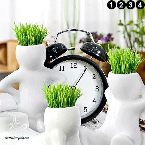 فازات جميلة لتضعي فيها نباتاتك الطبيعية hayahcc_1446048184_264.jpg