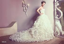 فساتين عروس طويلة hayahcc_1450636218_336.jpg