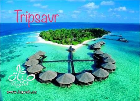 جزر الأميرات احلي جزر العالم hayahcc_1483924019_547.jpg