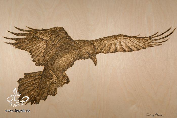 فنان أمريكي يستخدم البارود لعمل لوحات رائعة hayahcc_1496472879_358.jpg
