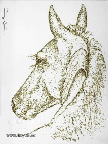 فنان أمريكي يستخدم البارود لعمل لوحات رائعة hayahcc_1496472880_749.jpeg